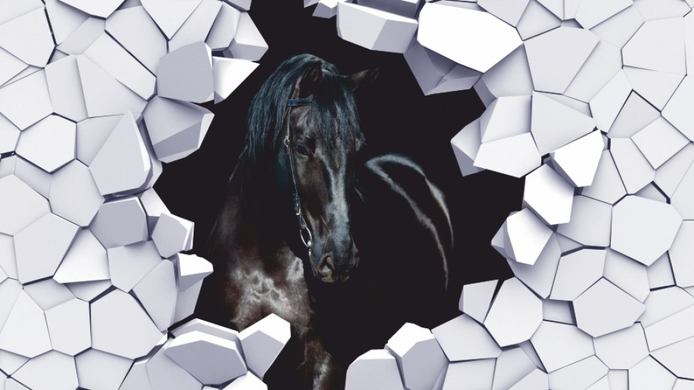 Fototapeta czarny koń 3d