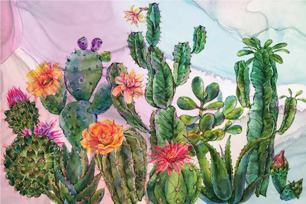 Fototapeta Kaktusy na Kolorowym tle