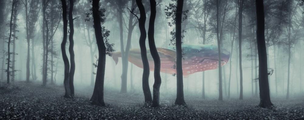 Fototapeta Leśny wieloryb xxl