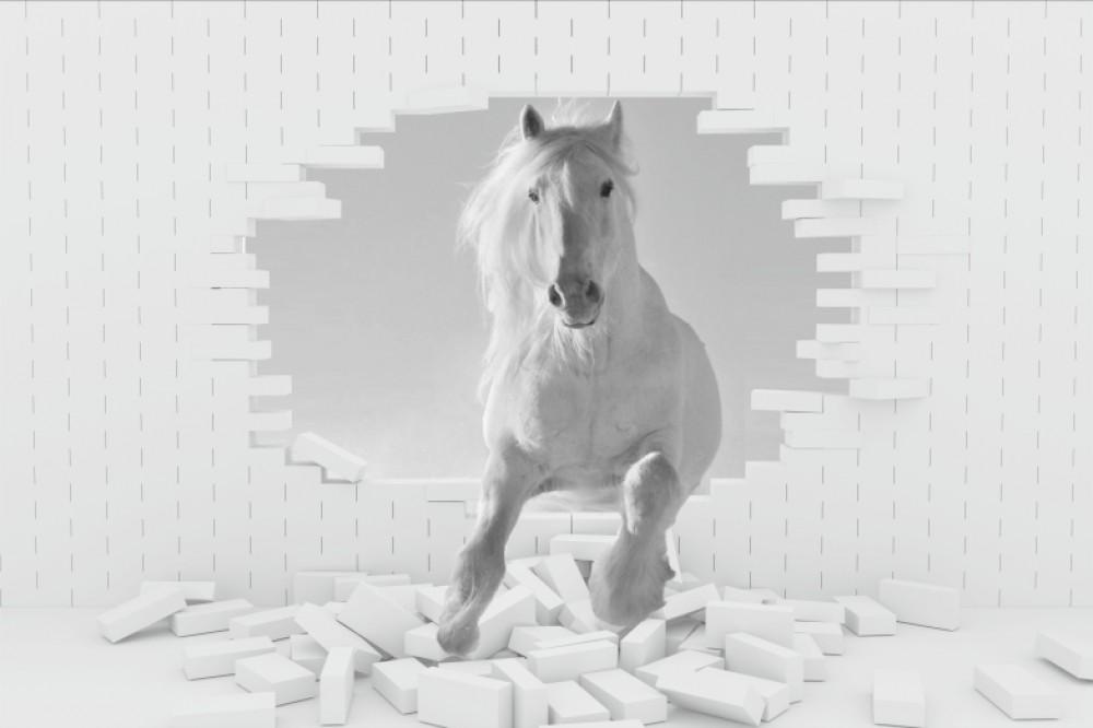 Fototapeta biały koń 3d