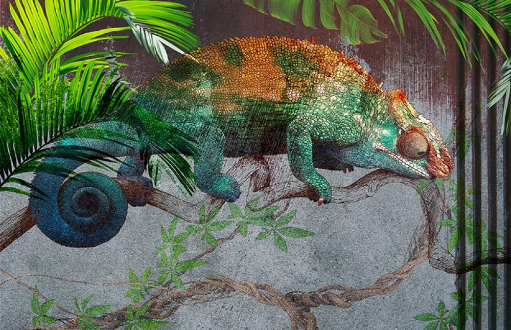 Kolorowy Kameleon 1A