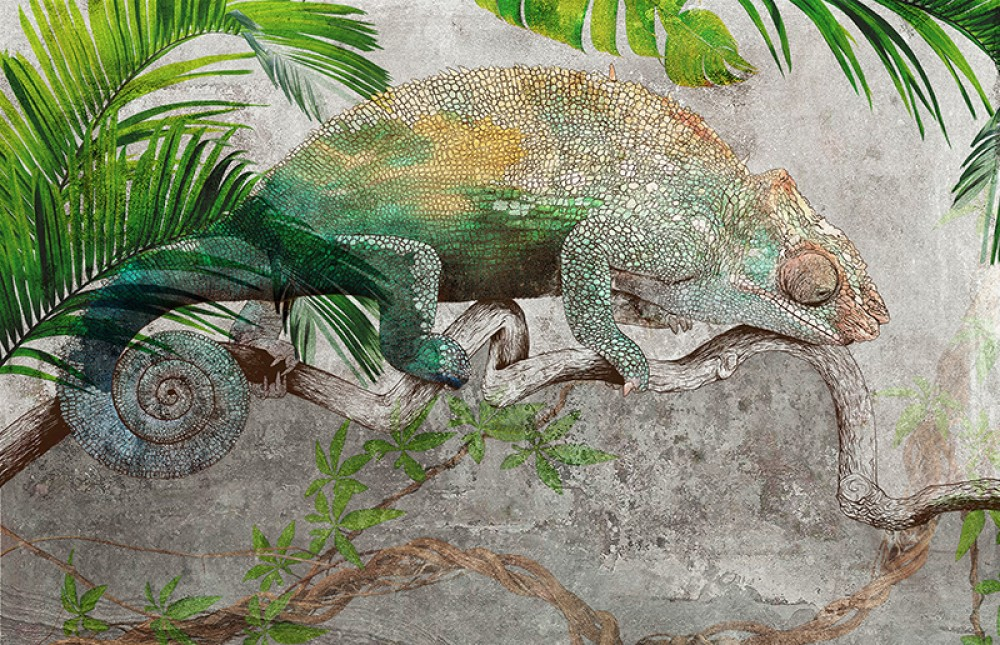 Kolorowy Kameleon 1B