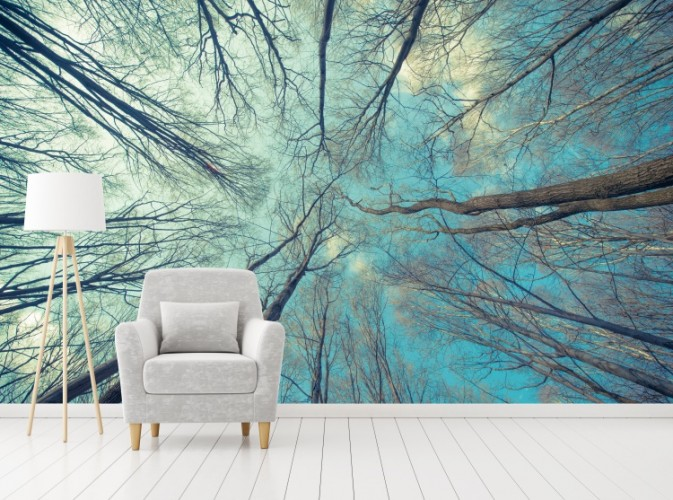 Fototapeta niebieski las